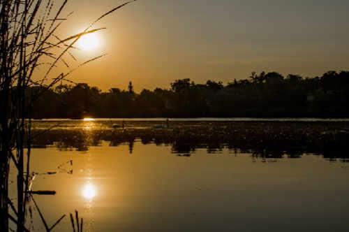 Die Donaubestattung feiern Sie mit uns in Hainburg, Korneuburg oder der schönen Wachau.